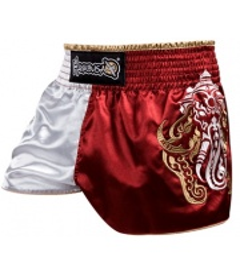 Spodenki Muay Thai Hayabusa WISDOM Shorts