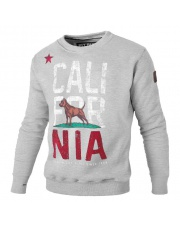 BLUZA PIT BULL CALIFORNIA FLAG CREWNECK GREY