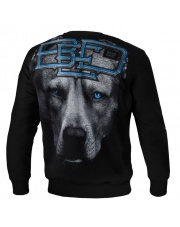 BLUZA PIT BULL BLUE EYED DEVIL 18 CREWNECK BLACK